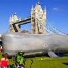whale_2865194b