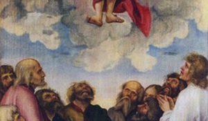 39799_ascension-von-kulmbach